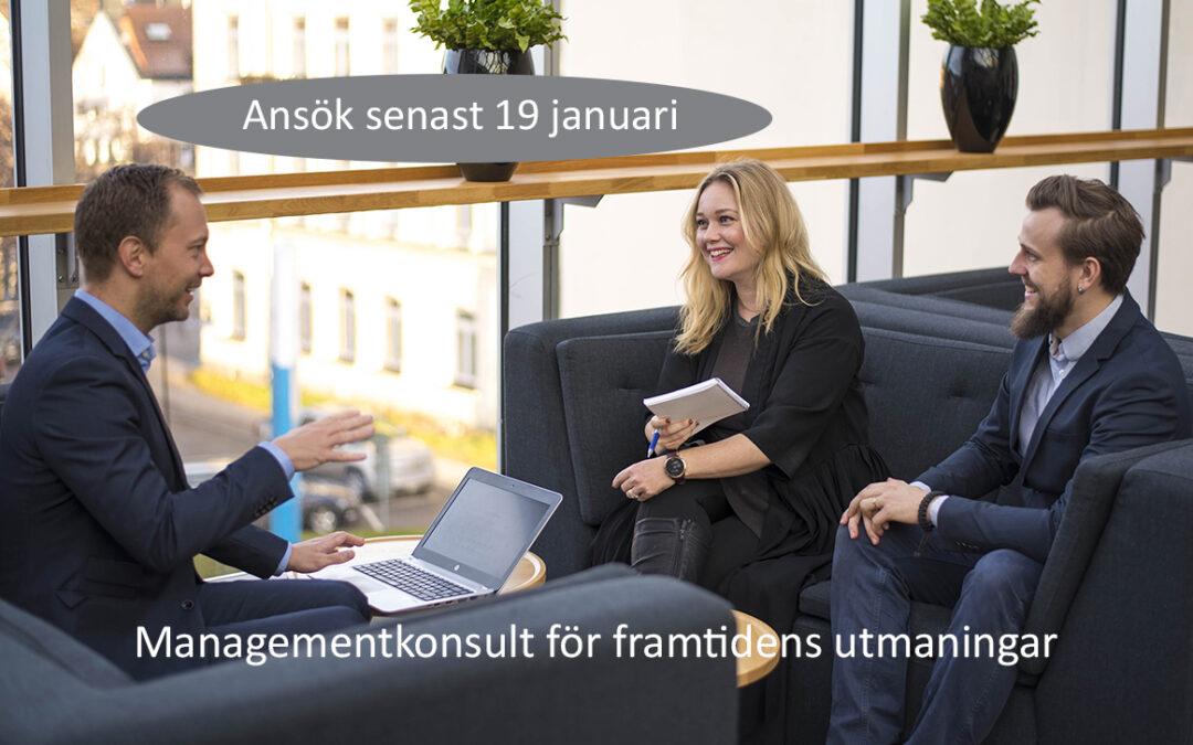 Managementkonsult för framtidens utmaningar